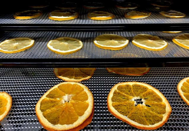 Have You Tried A Dehydrator For Fruits And Veggies?