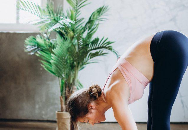 Great Indoor Exercises